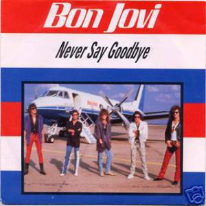 Never Say Goodbye Album