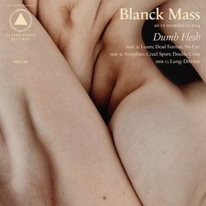 Dumb Flesh Album